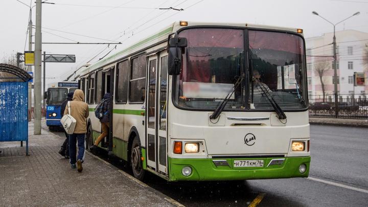 Пострадала 3-летняя малышка: в Ярославле водитель автобуса захлопнул в дверях двух девочек