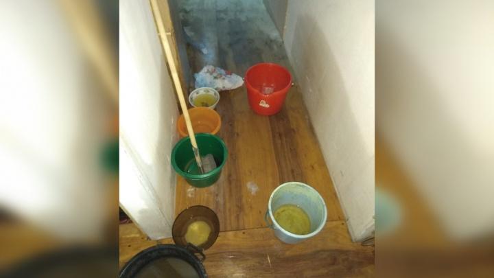 Жильцы дома на Сухоложской, который залило кипятком, показали, какой была квартира во время потопа