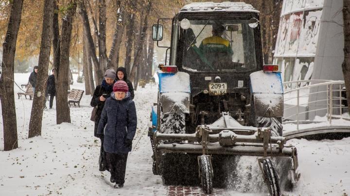 Не успевают чистить: в Новосибирске нашли почти 80 домов с неубранными дворами