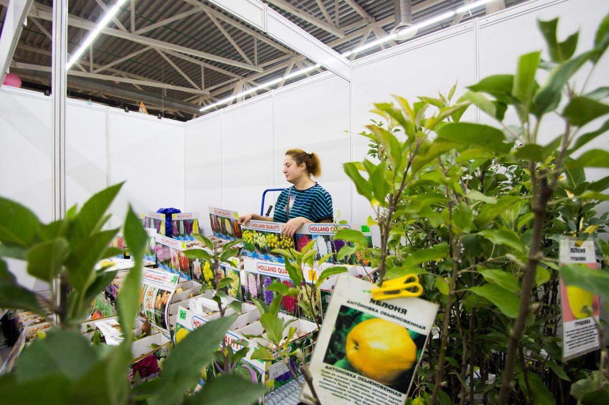 От саженцев до пушнины: на «Пермской ярмарке» открылась выставка «Осенний сад»