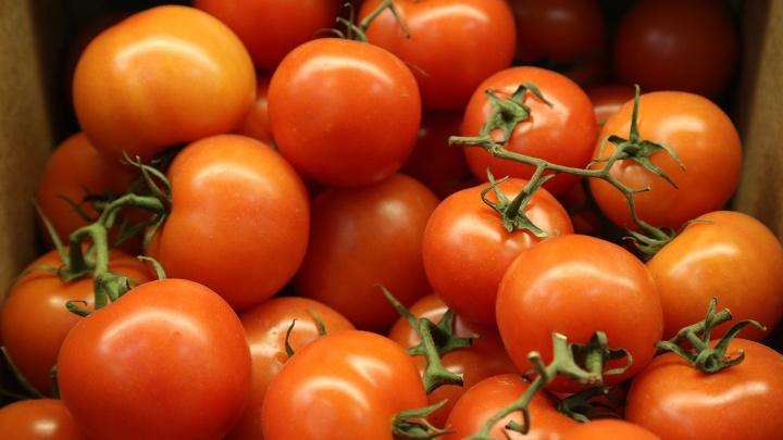 В грядущие выходные в Уфе пройдут традиционные сельхозярмарки
