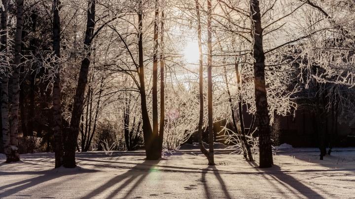 МЧС продлило предупреждение о сильной изморози в Прикамье