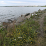 «Будет самое красивое место в городе»: как и за сколько обустроят набережную озера в Челябинске