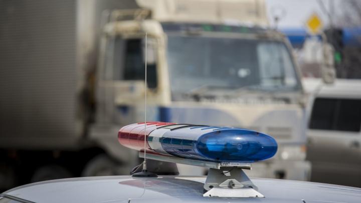 В Новосибирской области трёхмесячная девочка погибла в ДТП