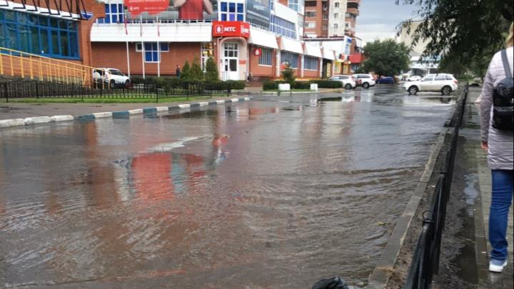 В мэрии объяснили, почему бульвар Мартынова топит после дождя