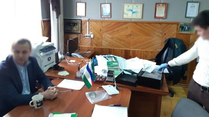 Распродал леса на 14,5 миллиона рублей: в Башкирии задержали чиновника-коррупционера