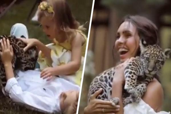 Семья оказалась в восторге от игривого пятнистого «котенка»