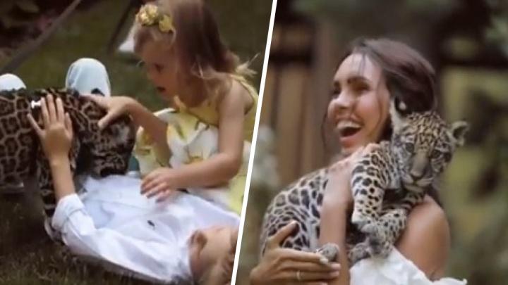Бег от ягуара: жена самарского олигарха Шаповалова Ксения Царицына пустила детей поиграть с хищником