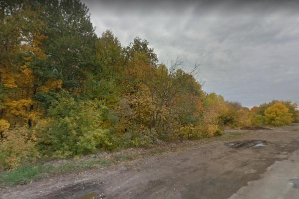 Строительство коснется лесопарка вдоль шоссе
