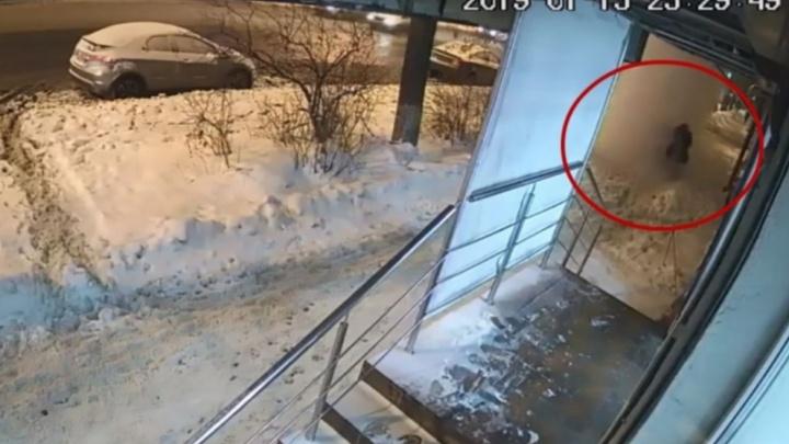 Следователи проверят дом, откуда сошёл снег на прохожих