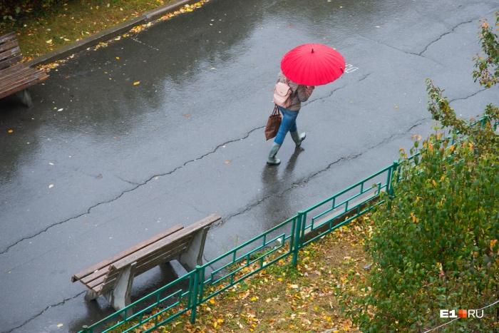 Всю неделю обещают небольшие дожди