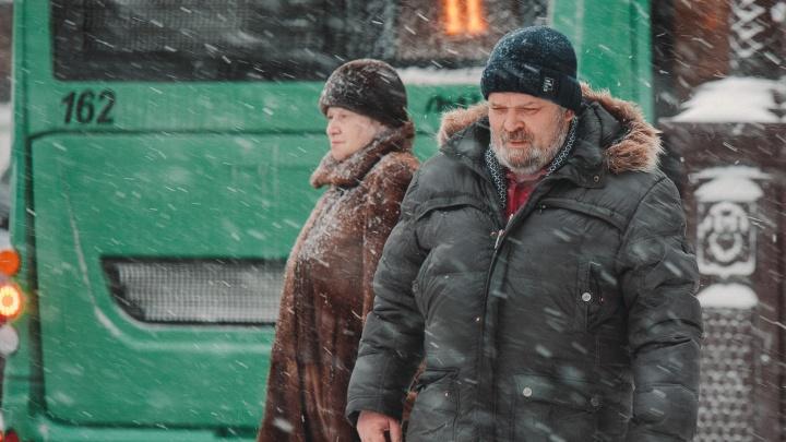 Тюменцам предстоит снежная неделя: синоптики поделились прогнозами на погоду