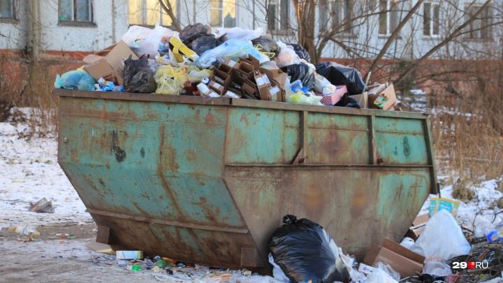 Архангельская область вошла в тройку регионов, где под угрозой срыва «мусорная» реформа