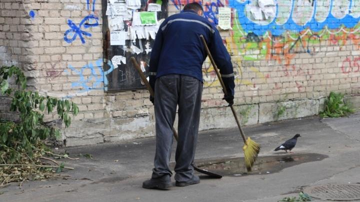 Работа молодым: куда устроиться юным северянам и сколько они за это получат