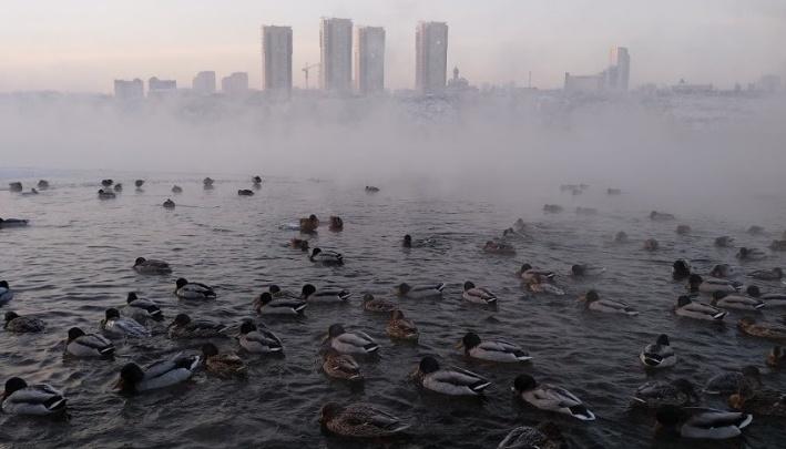 Синоптики дали прогноз на месяц: в середине ноября в Красноярске похолодает до –20