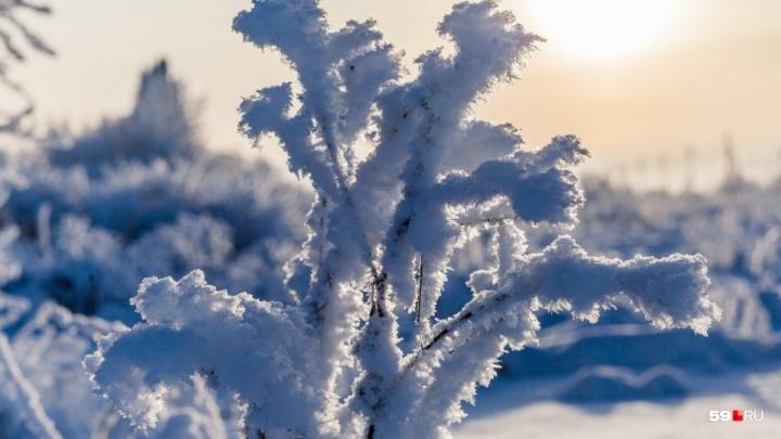 Морозы до -25 градусов. МЧС предупредило о сильном похолодании в Прикамье