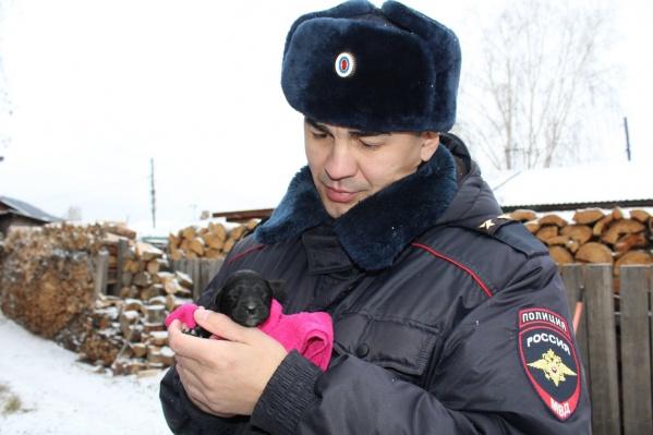 Собака вынесла своего щенка в безопасное место, где о нем позаботились полицейские