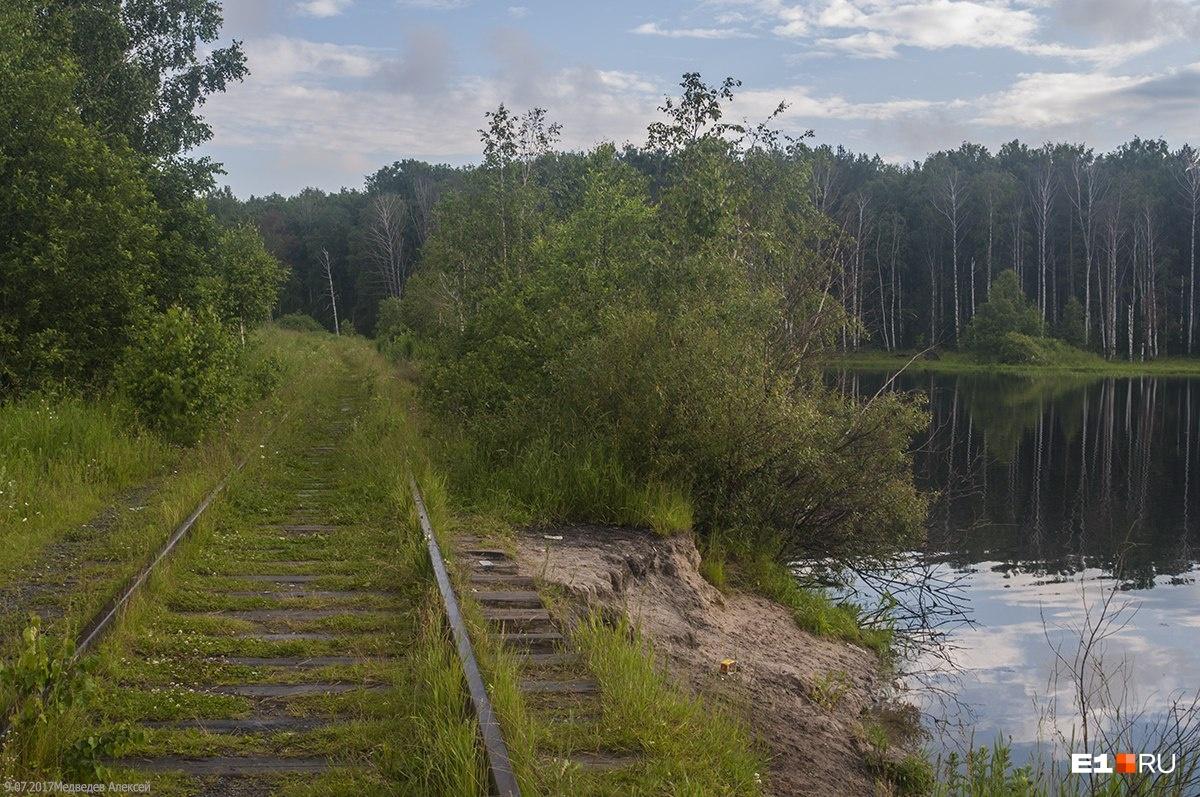 Старые пути на перегоне «Дачная — Красногвардейск»