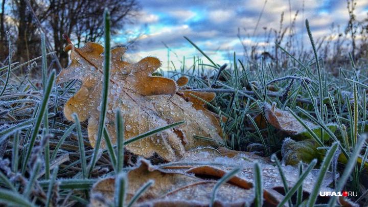 О тепле придется забыть: в Башкирию идут заморозки