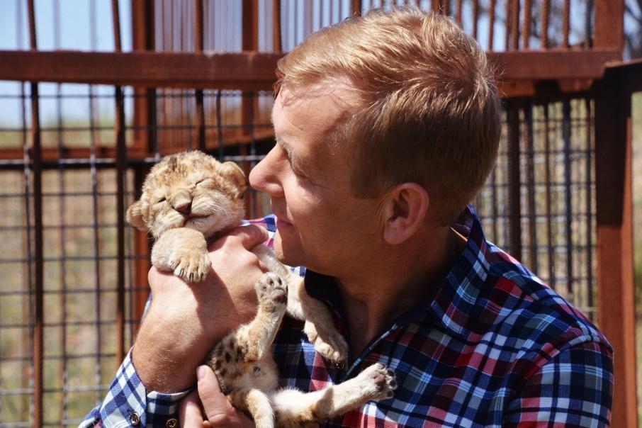 Спасённая челябинцами львица Лола впервые стала мамой