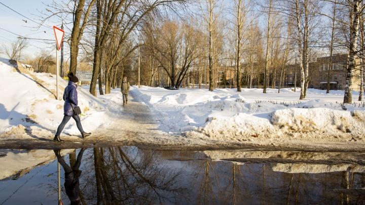 Ярославна отсудила у мэрии 150 тысяч рублей за плохую уборку тротуара