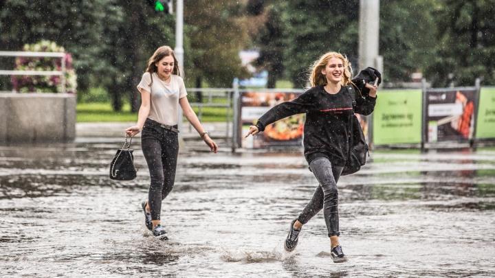 Дожди задержатся: синоптики рассказали, когда в Новосибирске улучшится погода