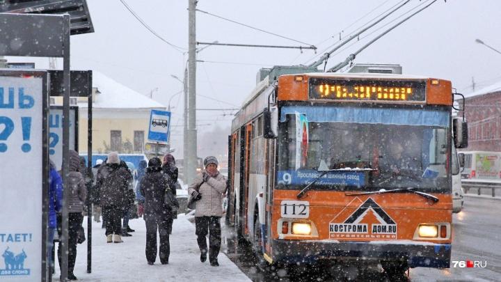 В Ярославле власти отменили плату за проезд в общественном транспорте