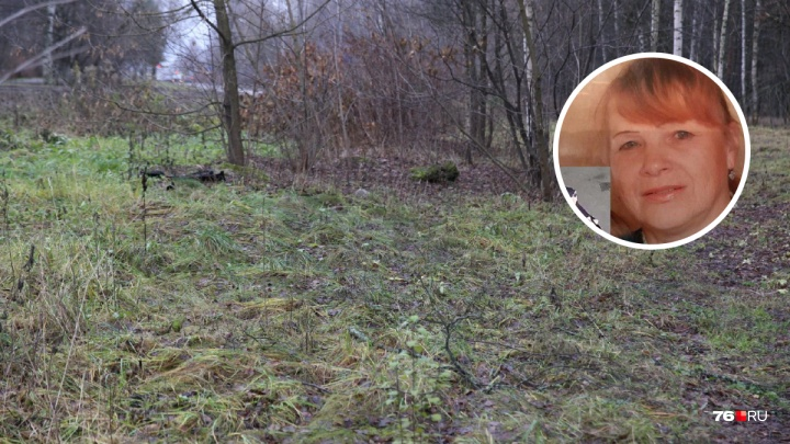 «Она лежала в придорожной канаве»: в Ярославской области нашли тело пропавшей без вести женщины