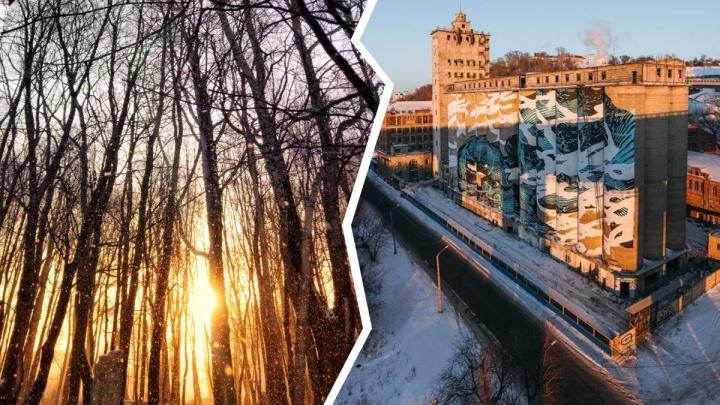 Лучшие фото этой недели: идеальный зимний рассвет и медленно погибающий элеватор на Черниговской