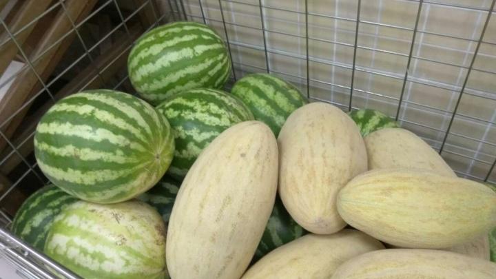 Советы эксперта: какие фрукты сейчас можно есть и чем опасны ранние дыни и арбузы