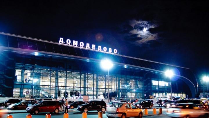 Пьяная ишимка поставила на уши два московских аэропорта, сообщив о бомбе в самолете