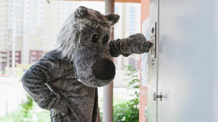 В квартиры, где дети были одни, пришёл Серый Волк: 4 из 10 впустили незнакомца