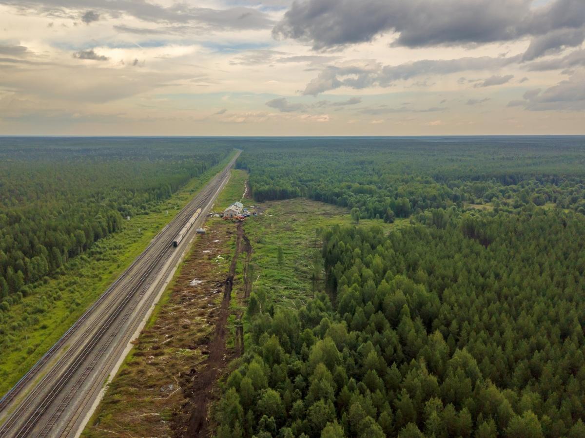 Местные узнали от строителей, что по новой железной дороге к предприятию будут подвозить отходы из Москвы