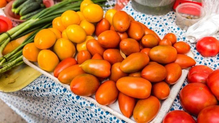 «Ещё утром росла в огороде»: новосибирцы распродают свои помидоры и огурцы на Avito