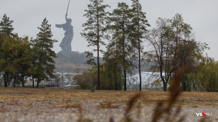 «Берегитесь деревьев и рекламы!»: на Волгоград вот-вот обрушится ураганный ветер