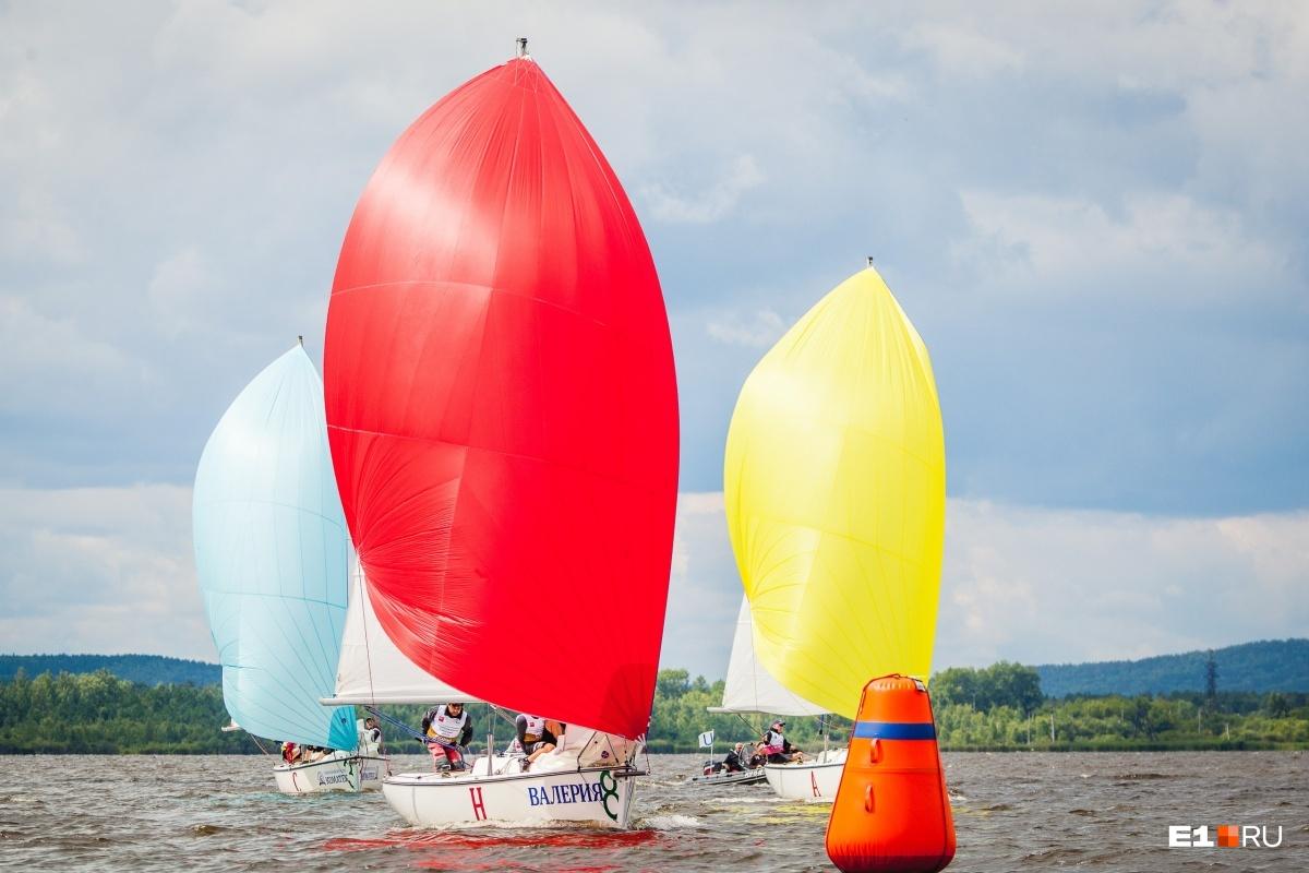 В соревнованиях примут участие 210 яхтсменов