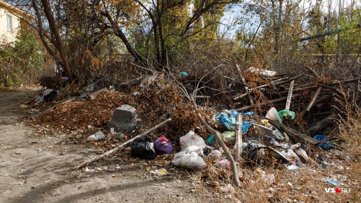 «Скомканная и разглаженная обложка»: в Волгограде у отдела полиции на мусорке уголовных дел не нашли