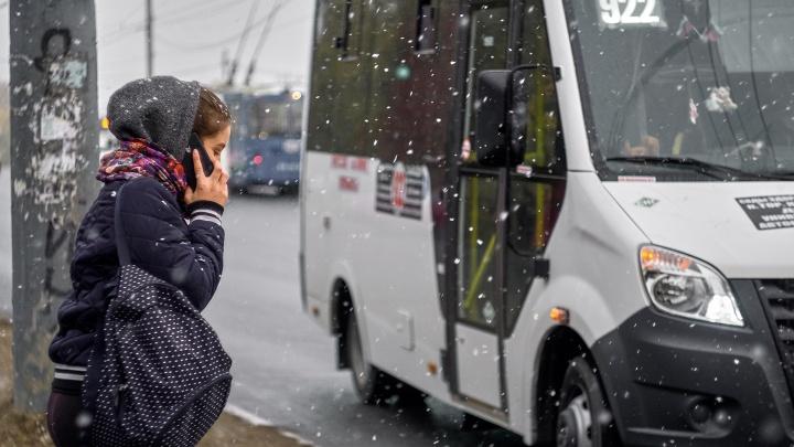 В Омской области спрогнозировали снег с дождем на выходные