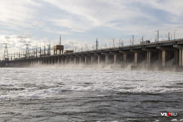 Чиновники предпочли сохранить воду, а не полноценный нерест рыбы