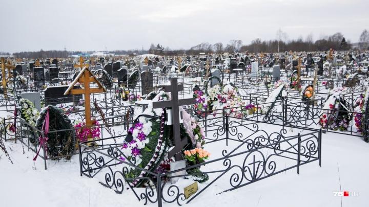 Смотря как быстро закапывать будут: рассказали, когда закончатся места на Осташинском кладбище