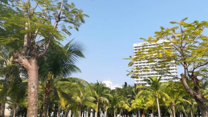 Какие болезни привозят с курортов красноярцы: напоминание и советы специалистов
