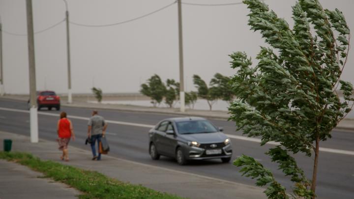«Ждем усиления ветра»: МЧС предупреждает об ухудшении погодных условий