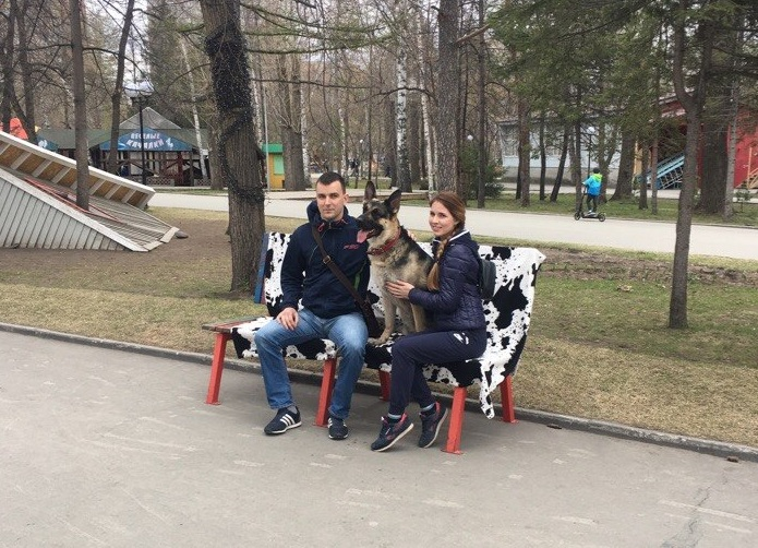 Новосибирцы могут сфотографироваться с понравившейся собакой за сто рублей