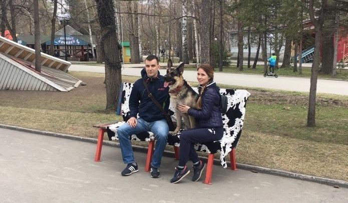 Милые дружелюбные собаки пришли фотографироваться с горожанами в Центральный парк