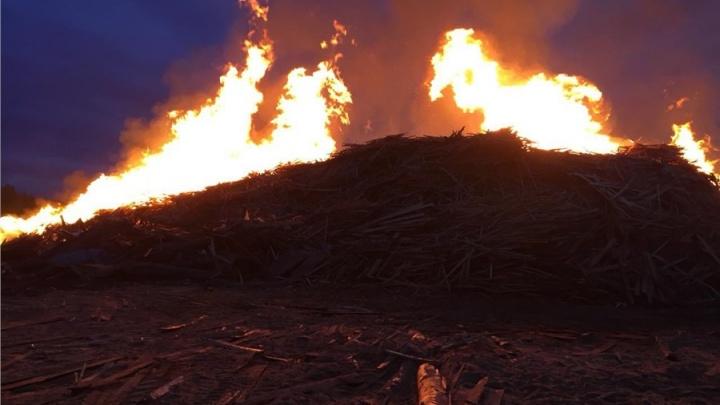 Стали заложниками: пожар на лесопилке выжег огромную площадь в метрах от поселка Таежный