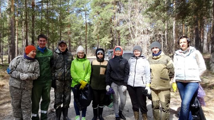 Приятная компания, дендротерапия и чаепития: экоактивисты приглашают тюменцев на лесные субботники