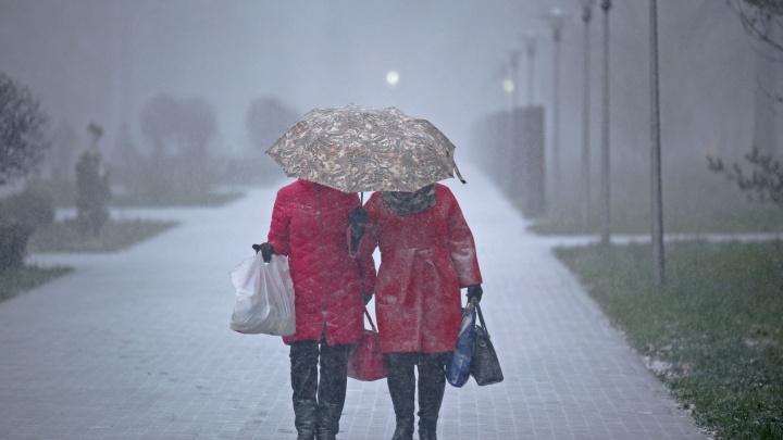 Мокрый снег и гололед: синоптики рассказали о погоде в Башкирии на 18 ноября