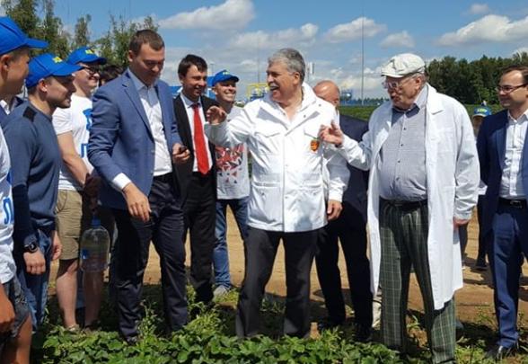 Депутат из Самары собрал клубнику Грудинина