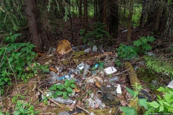 В лесу Илья Варламов нашел бутылки, покрышки, куски полиэтилена и даже старые матрасы