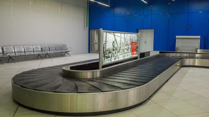 «Пропал багаж»:пассажиры самолёта из Екатеринбурга прилетели в Новосибирск без чемоданов